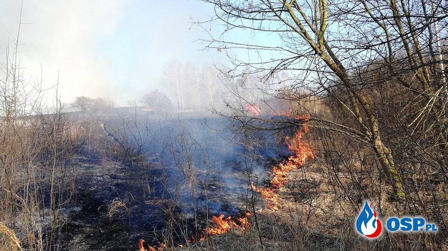 Film ukazujący przed wczorajszy pożar traw w Żarkach. OSP Ochotnicza Straż Pożarna