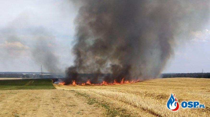 Pożar 40 hektarów ścierni ze słomą. OSP Ochotnicza Straż Pożarna