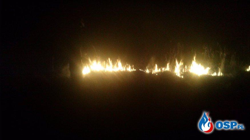Kolejny pożar traw w Górce OSP Ochotnicza Straż Pożarna