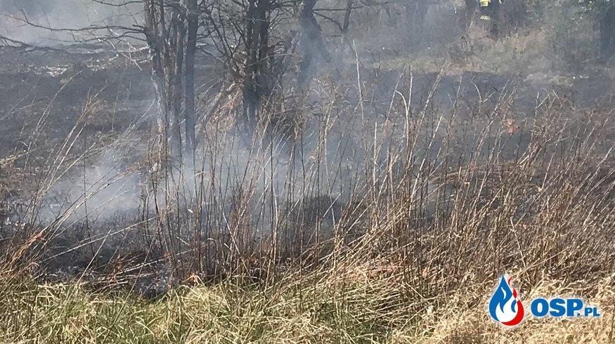 84/2020 Pożar trawy OSP Ochotnicza Straż Pożarna