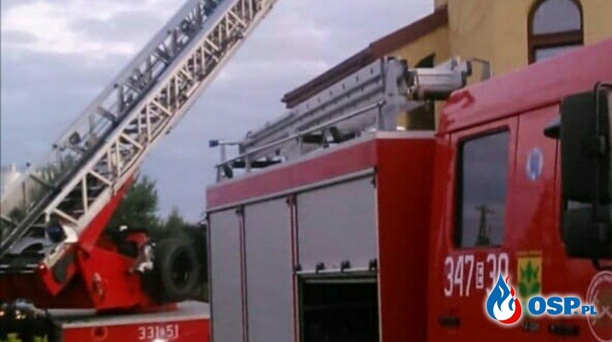 Współpraca to podstawa - usuwanie gniazda owadów OSP Ochotnicza Straż Pożarna