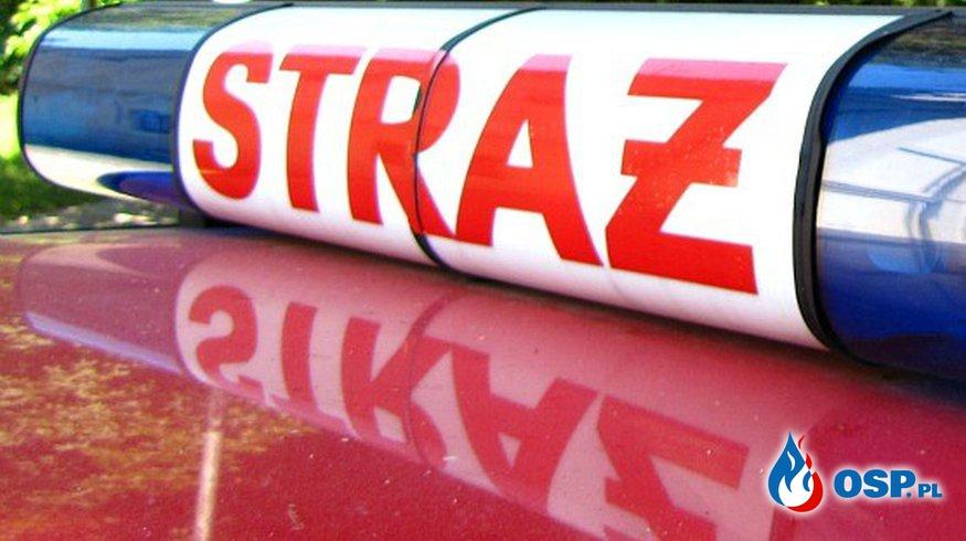 Pożar ściółki leśnej - ĆWICZENIA BOJOWE OSP Ochotnicza Straż Pożarna