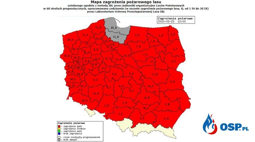 """Najwyższy stopień zagrożenia pożarowego w polskich lasach. Leśnicy apelują: """"Zostań w domu"""". OSP Ochotnicza Straż Pożarna"""