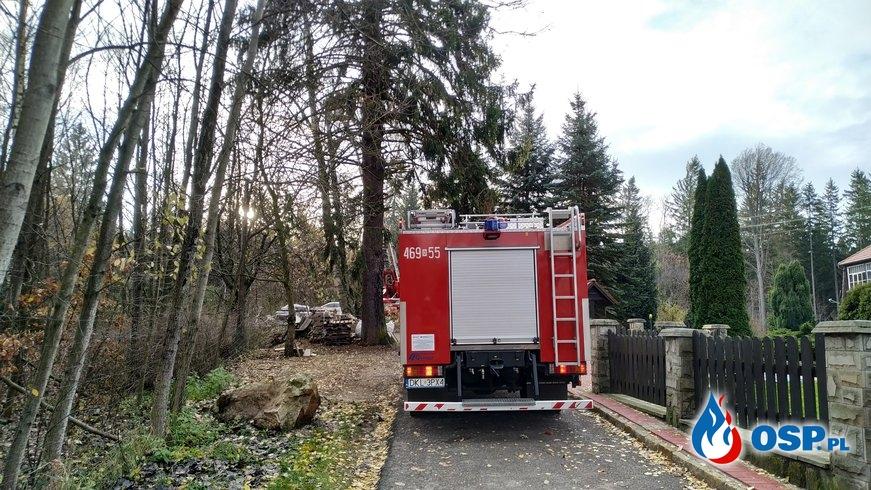 Silny wiatr powodował zagrożenie! OSP Ochotnicza Straż Pożarna