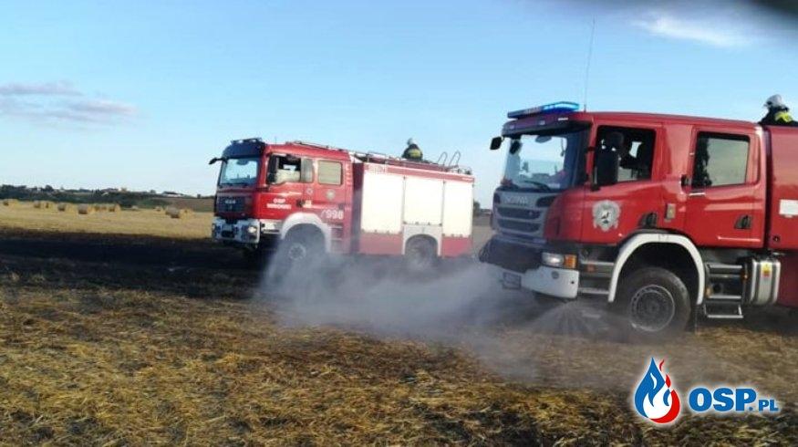 Popowo – pożar ścierniska i zboża na pniu OSP Ochotnicza Straż Pożarna