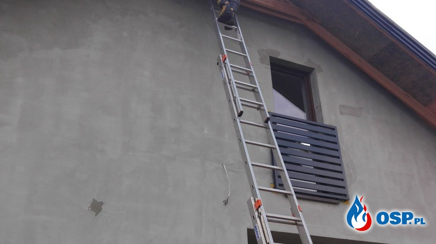 Gniazda owadów błonkoskrzydłych OSP Ochotnicza Straż Pożarna