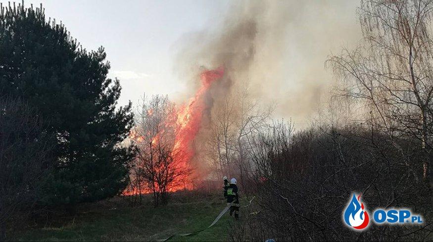 Trzy pożary jednego dnia - Jankowice, Żarki, Mętków OSP Ochotnicza Straż Pożarna