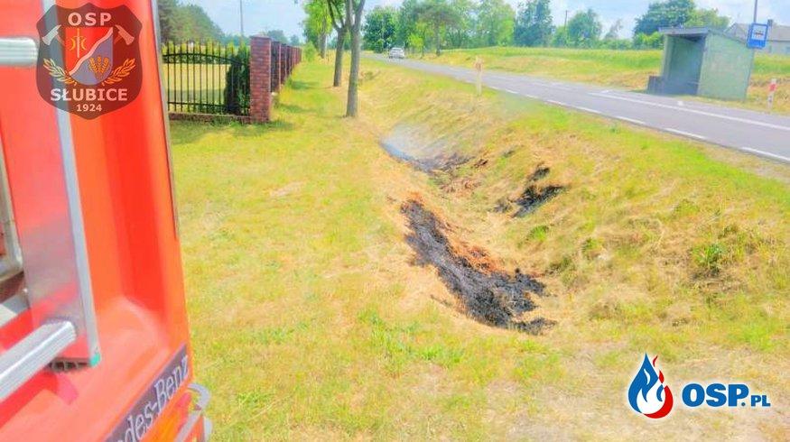 Pożar trawy w przydrożnym rowie OSP Ochotnicza Straż Pożarna