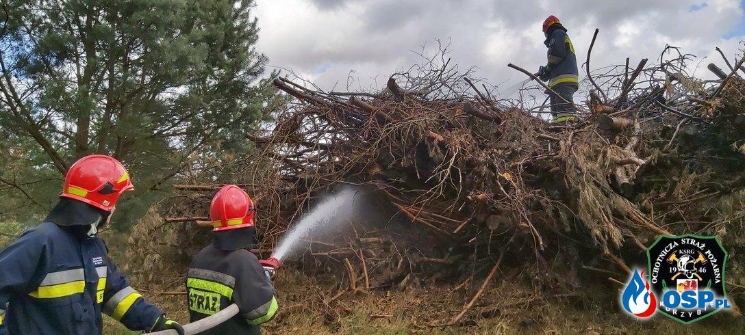 Pożar Sterty Gałęźi 03-04-2020 OSP Ochotnicza Straż Pożarna