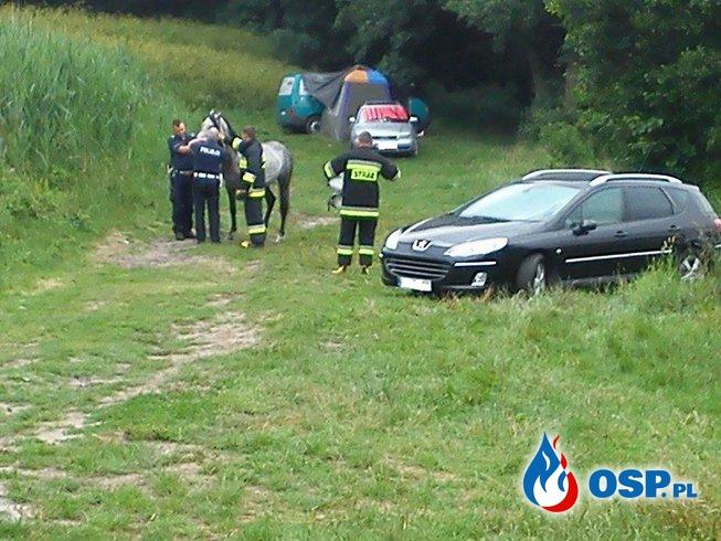 Niecodzienna Akcja OSP Ochotnicza Straż Pożarna