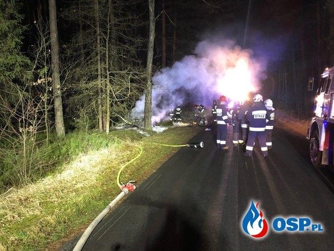 Auto zapaliło się po uderzeniu w drzewo. Kierowca zdołał uciec przed ogniem. OSP Ochotnicza Straż Pożarna