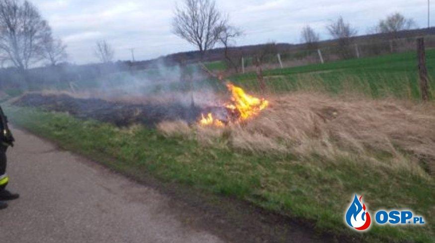 2019-03-29 godz.17:50 trawa na poboczu drogi OSP Ochotnicza Straż Pożarna