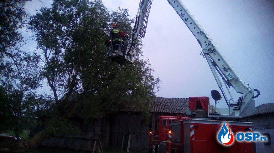 Powalona wierzba na budynek gospodarczy!!! OSP Ochotnicza Straż Pożarna